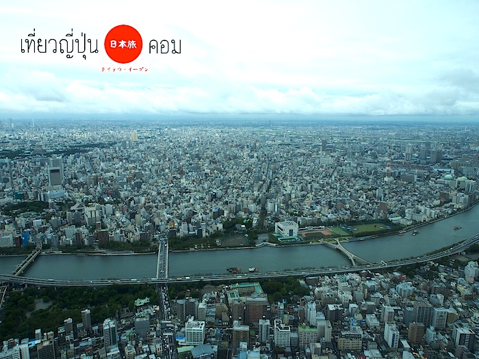 skytree view