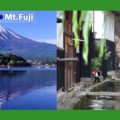 nohi_fuji_feature