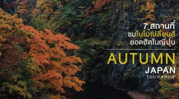 autumn-Tourkrub