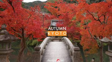 kyoto_autumn main