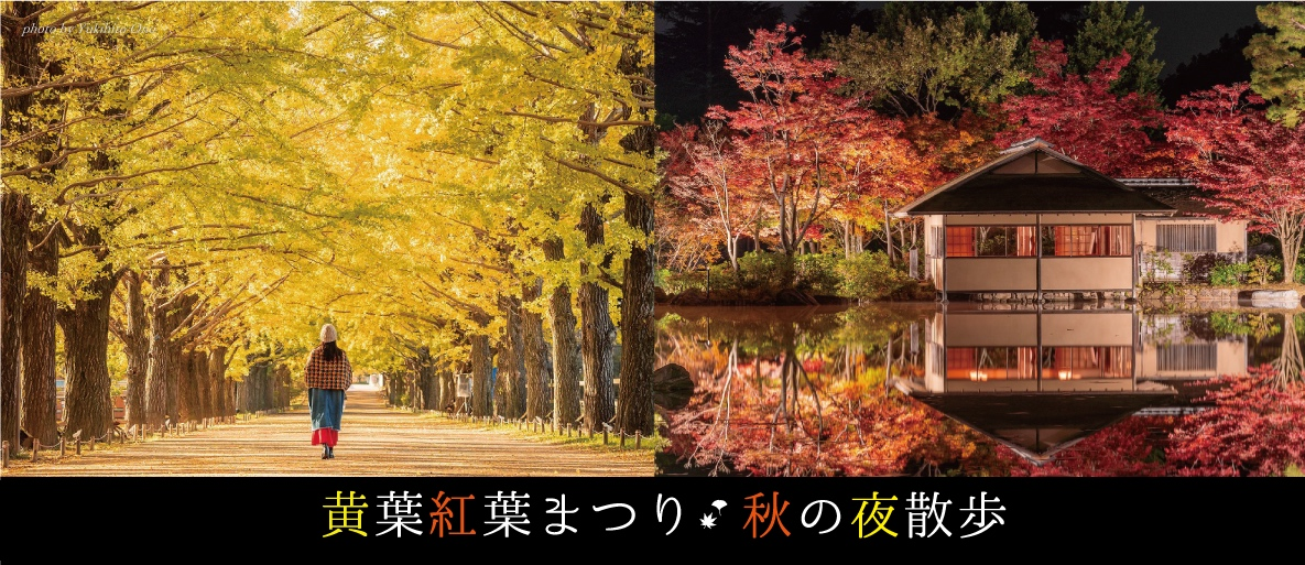 showakinen_autumn