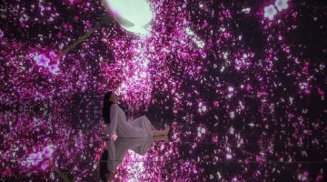 Floating in the Falling Universe of Flowers_Cherry Blossoms_02
