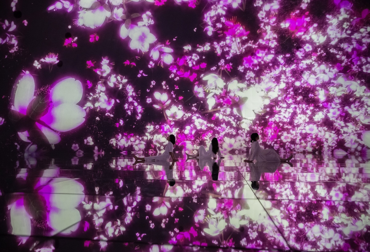Floating in the Falling Universe of Flowers_Cherry Blossoms_05